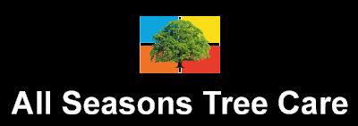 All seasons Tree Care Tree Surgeons Henley on Thames